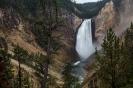 Teton - Yellowstone - Glacier
